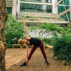 Triangle Pose Yoga